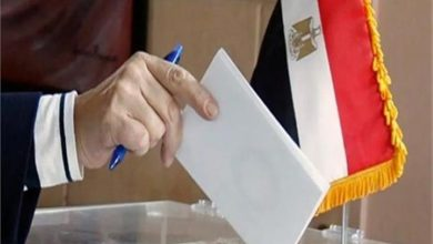 Photo of انتخابات مجلس الشيوخ المصري… بين الضرورة والإقبال الجماهيري