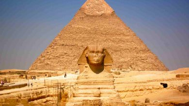 Photo of مؤرخ روسي رداً على «ماسك»: نملك كل الأدلة أن المصريون القدماء هم من بنوا الأهرامات